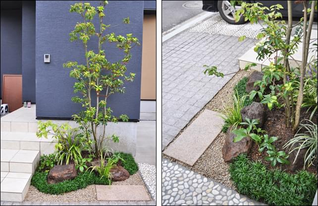 玄関横へシンボルツリーに合わせた坪庭風デザインを