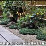 敷石の玄関アプローチを持つ和風の庭-杉並区S様邸