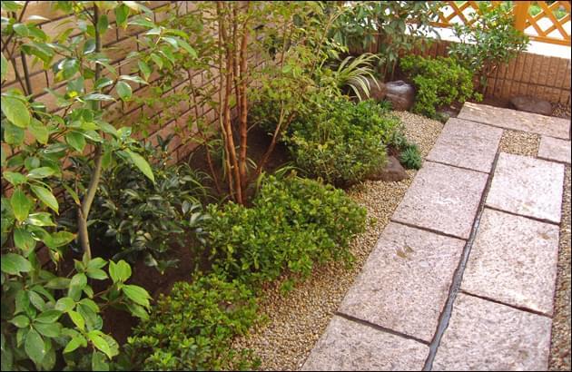 敷石の渡りと植栽の様子