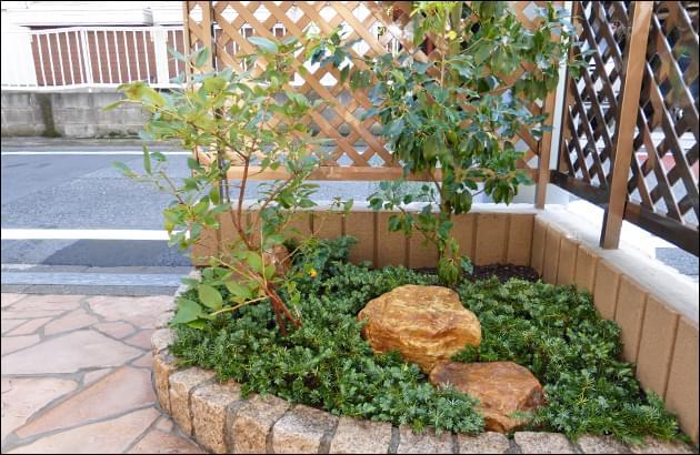 植木の濃緑色と庭石の茶系コントラスト