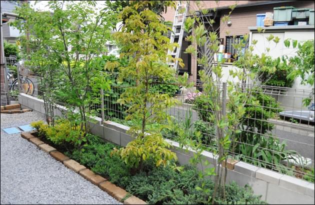 花壇を施工して植栽をレイアウト