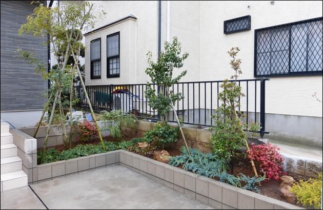 駐車場の花壇へ植栽された植木