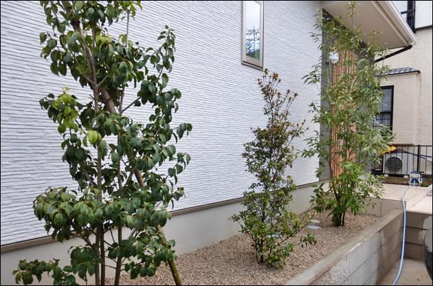常緑樹の植栽により白壁がより鮮やかに