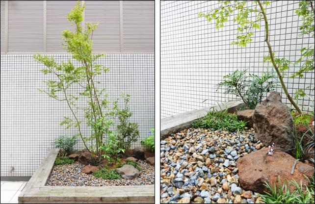 ナチュラルなモミジを主木とした坪庭風のデザイン