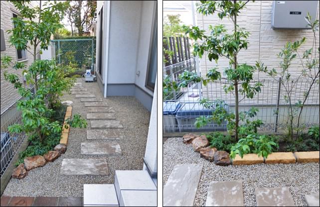アプローチとシンプルな植栽レイアウト