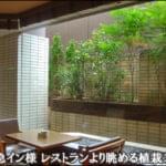 レストランより望む植栽のグリーン-渋谷東急イン様