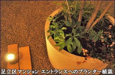 マンションエントランスへ夜間も美しいプランター植栽を-足立区マンション