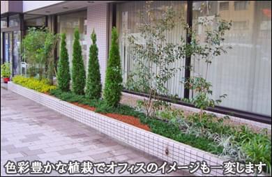 花壇内の植木を色彩豊かにリフォーム-墨田区オフィスビル