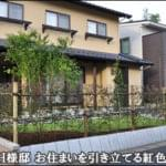 トキワマンサクの生垣で囲んだ芝生の庭-野田市H様邸