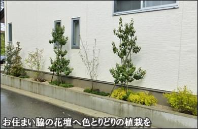お住まい脇の花壇へ色彩豊かな植栽を-流山市O様邸