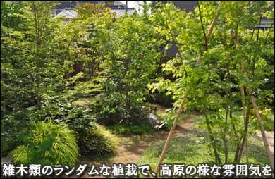 雑木類の植栽で庭を高原の様な雰囲気に-市川市F様邸