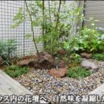モミジが揺らぐ、小石と下草による自然風の小庭-新宿区マンションI様邸専用庭