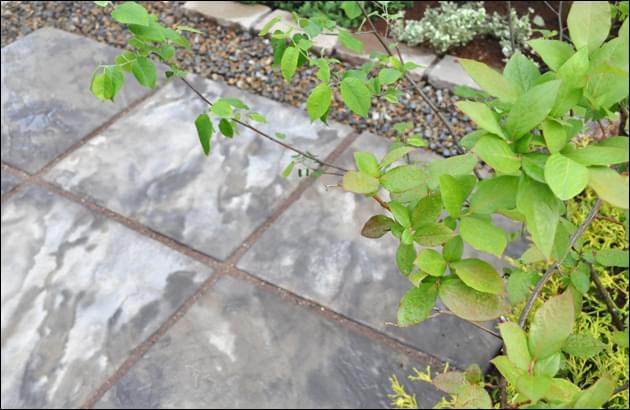 庭木が寄り添うシックなミニテラス