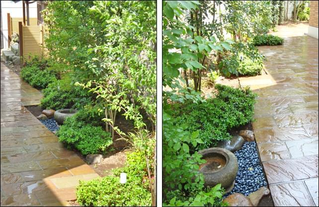 既存手水鉢と低木を合わせる
