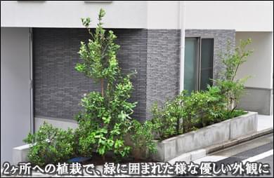 2ヶ所の花壇へ緑が溢れる様な植栽を-世田谷区F様邸