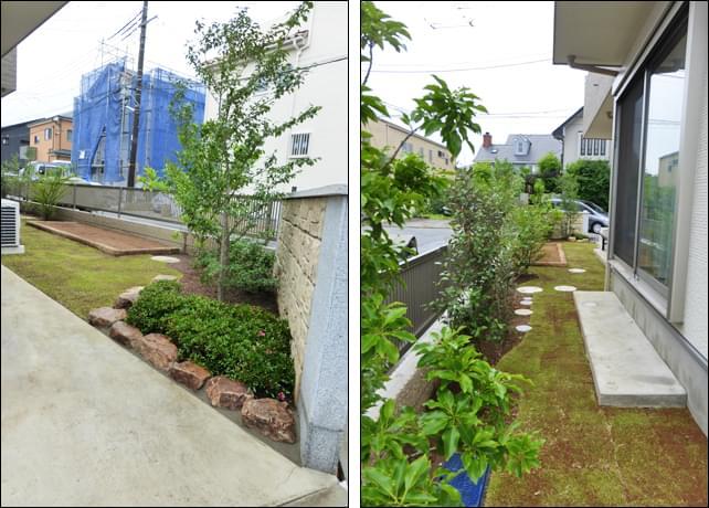 シンボルツリーのエゴノキと、芝生のカーブライン