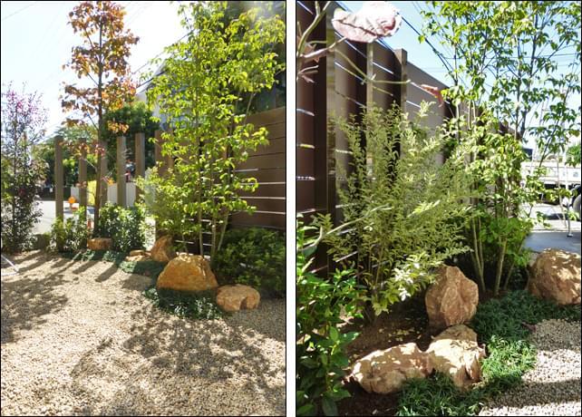 ハナミズキやヤマボウシ、低木類が作る洋風ガーデン