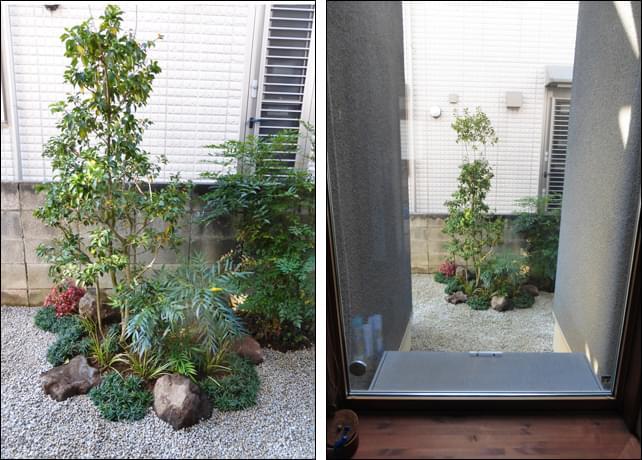 玄関の窓から眺める坪庭風レイアウト