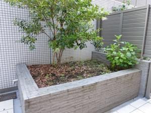 造園前の庭スペース