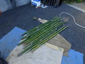 磨きを入れた立子竹