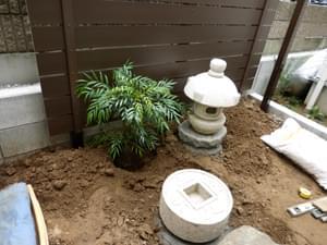 コンフューサの植栽