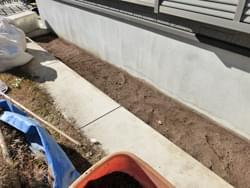 芝生と土を掘削撤去