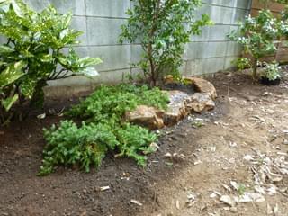 グランドカバーと庭石組み