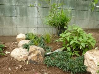 下草類にあわせる庭石組み