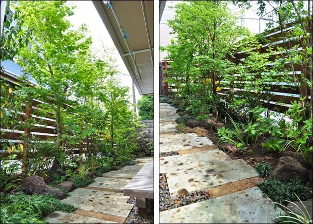 元々存在したかの様な植栽が作る、木漏れ日のある庭