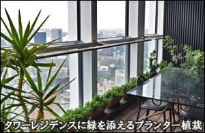 タワーレジデンス43階に緑を添えるプランター植栽-フラワーデザインレッスン虎ノ門ヒルズレジデンス様