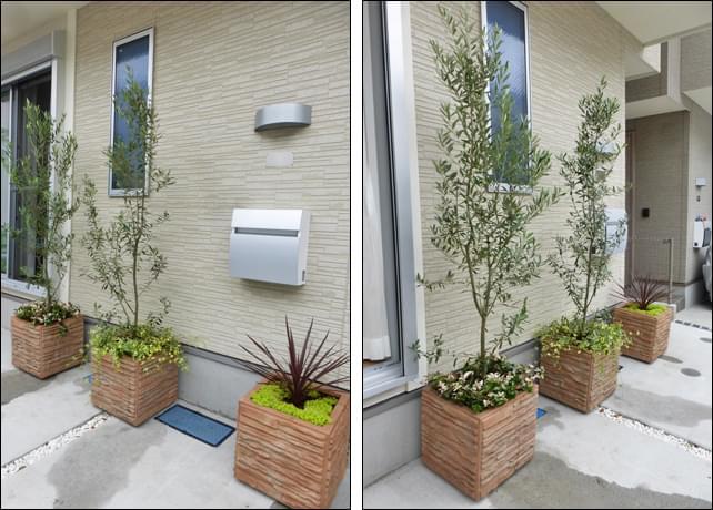 お住まいの外壁にも調和するプランターの植栽群。