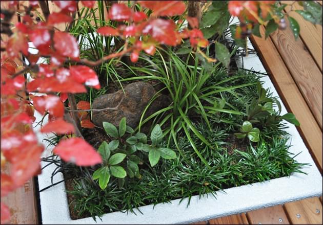 小さな領域でも作り出せるナチュラルな植栽デザイン