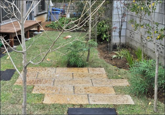 現状維持よりも生長計画をしたい雑木の庭