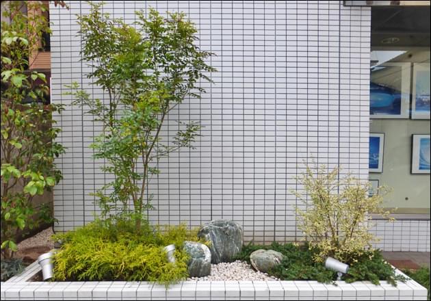 シンボルツリーと低木をレイアウトした花壇