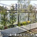 マンションバルコニーを植木が彩るプランター植栽-新宿区O様邸