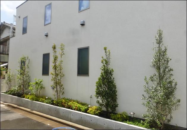 外壁沿いに点在させた洋風の植木