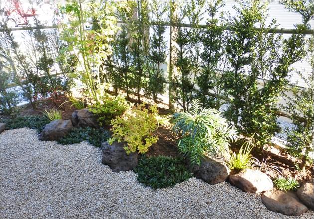キンメツゲの生垣に囲まれた小さな和風のお庭