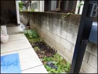 庭づくり前の玄関アプローチ