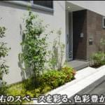玄関左右を色彩豊かに彩る洋風の植栽-江戸川区M様邸