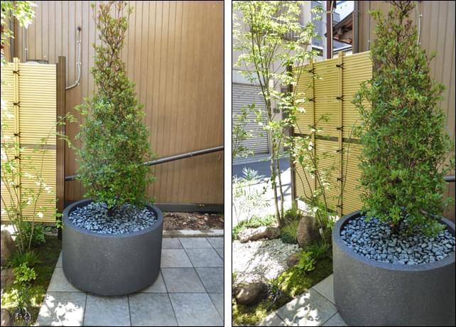 和風の庭に合わせたプランター植栽