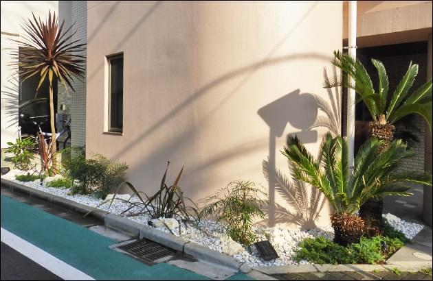メンテナンスも容易な南国リゾート風植栽
