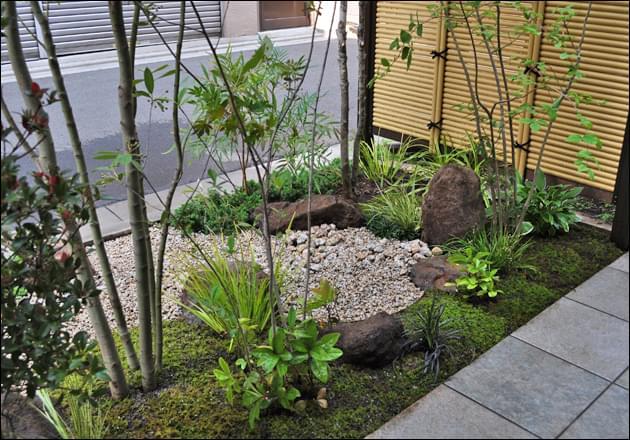 半日陰の環境と雑木の植栽が引き立たせる苔庭