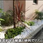 南国を思わせる植栽、琉球石灰岩・白砂利でリゾート感を-豊島区S様邸