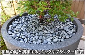 和風のお庭に合わせたシックなプランター植木を設置-台東区マンションエントランス