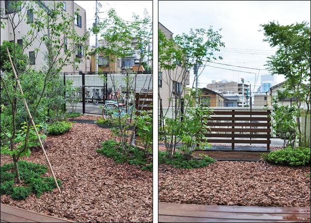 お庭の出入り通路は森の小道の様な自然体に
