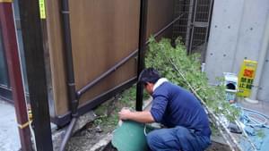 人工竹垣用のアルミ柱の据付