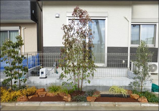 リビング窓を目隠しする植木レイアウト