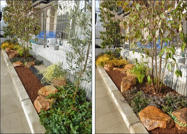 土壌改良も施した2つの花壇