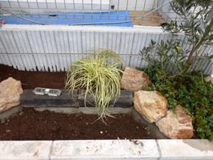 花壇の向こう側へカレックスを植栽