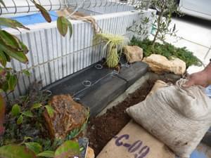 花壇の中の土を入れ替え